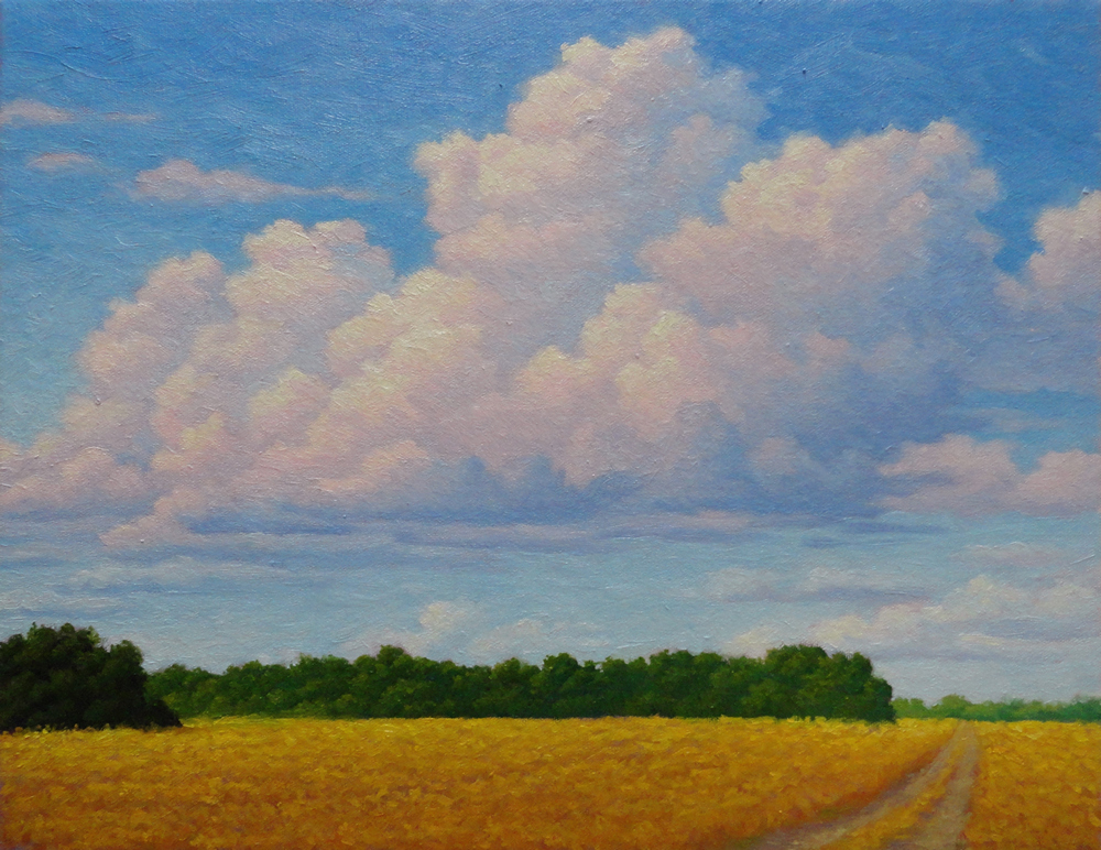 Summer Fields. 14 x 18, oil/canvas