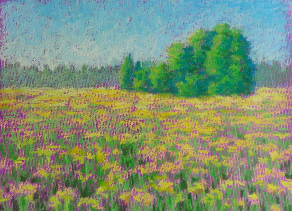 Summer flowers, 12 x 16, oil pastel on canvas