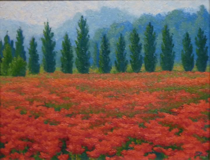Poppy Scherzo,oil,11x14inches