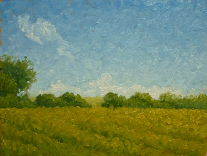 Field Study oil,11x14 inches